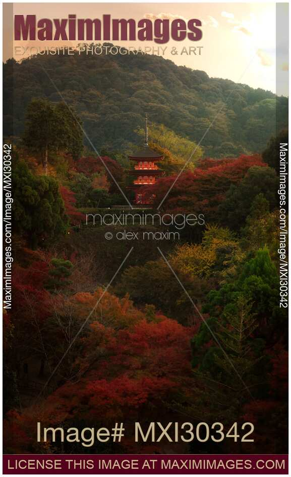 Stock photo of Beautiful autumn scenery of Koyasu pagoda of Kiyomizu-dera temple in Kyoto Japan