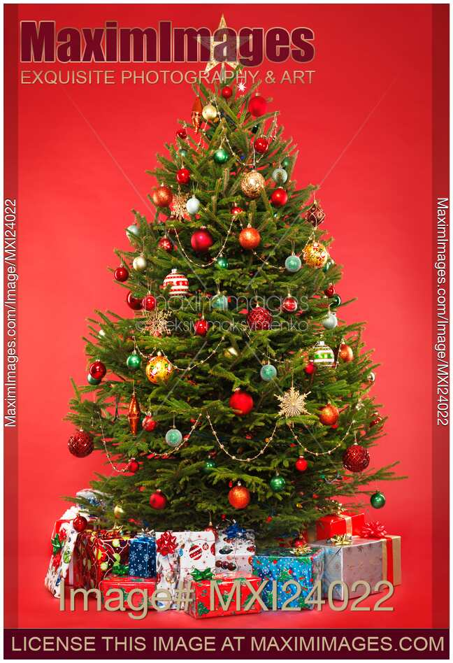 Photo Decorated Christmas Tree On Red With Presents Under It