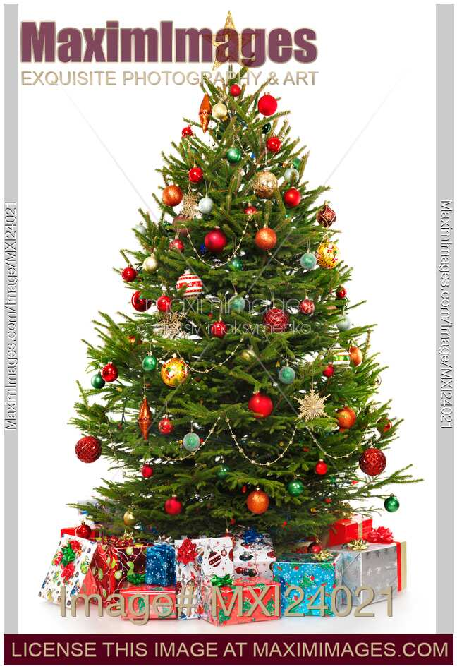 stock photo of decorated christmas tree with presents under it
