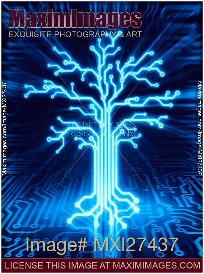 newtons telecom dictionary telecommunications networking information technologies the internet