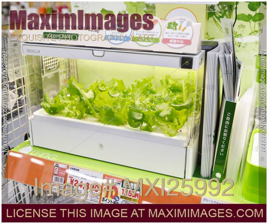 Green Farm Home Hydroponic Gardening Unit