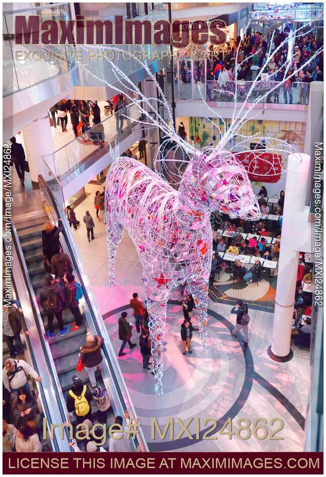 Flower Decoration In Shopping Centre