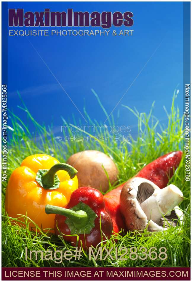 Fresh vegetables peppers and mushrooms still life in green grass
