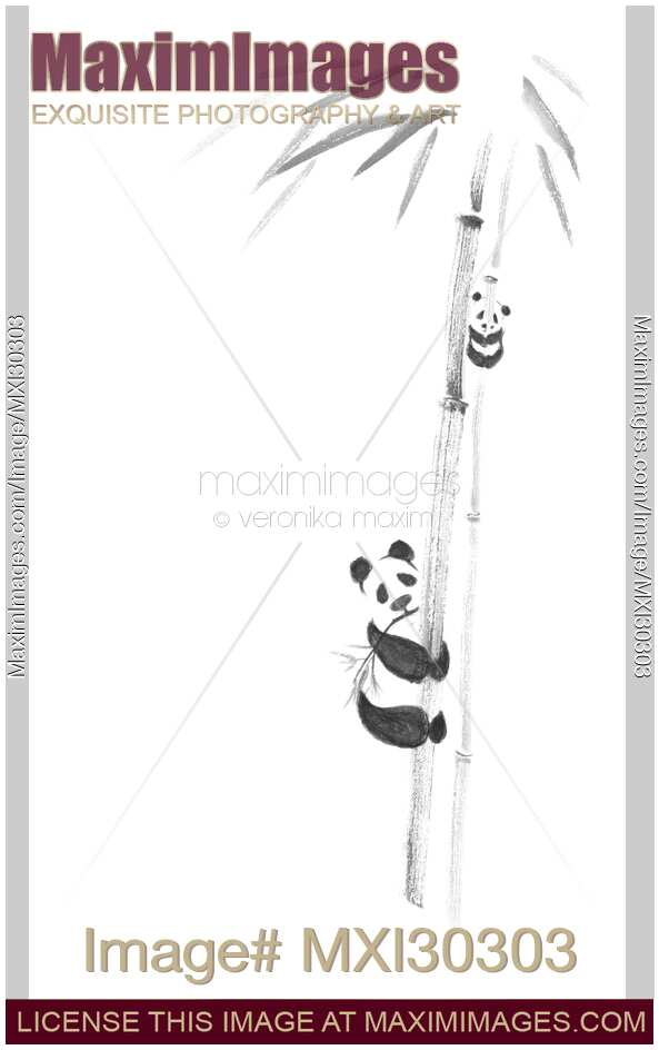 Cute pandas climbing bamboo trees sumi-e painting design black on white background