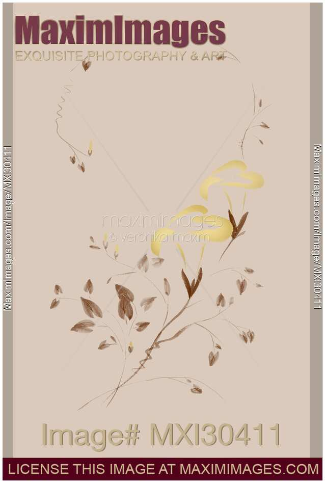 Golden Morning Glory flowers Sumi-e illustration artistic design on beaige background