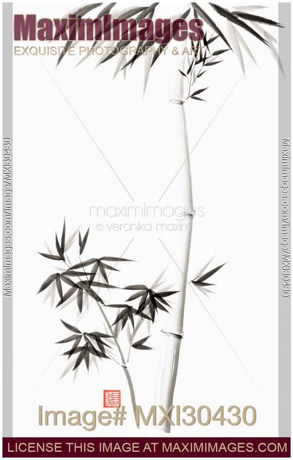 Bamboo stalk with branches and leaves Japanese Zen Sumi-e painting on white rice paper