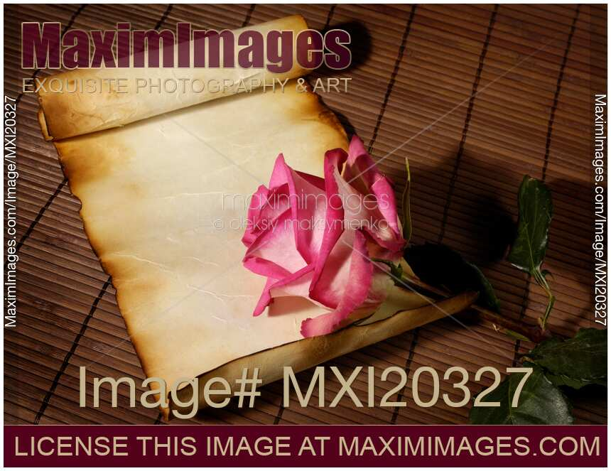 stock photo of love letter background with rose