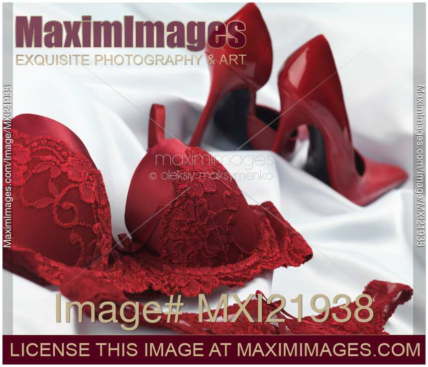 795f4d7a61d5b6 Burgundy lacy underwear and sexy high heel shoes on shiny white silky  fabric | MaximImages stock photo