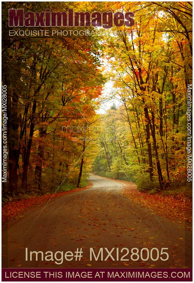 stock photo road through colorful fall scenery maximimages