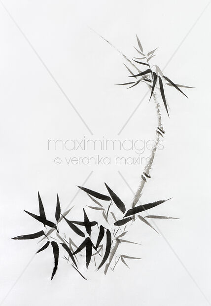 Bamboo stalk with young leaves Sumi-e Japanese Zen painting artwork