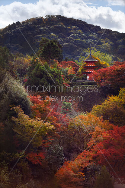Beautiful autumn scenery of Koyasu pagoda in fall nature at Kiyomizu-dera temple Kyoto Japan