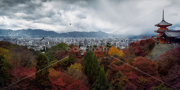 Dramatic panorama of Kyoto city in autumn scenery and Kiyomizu-dera Sanjunoto pagoda