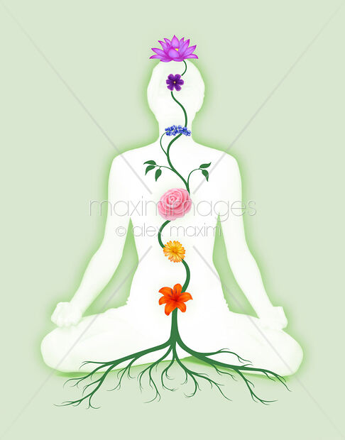 Stock photo of Meditating Woman with Chakra Flowers Growing from Root