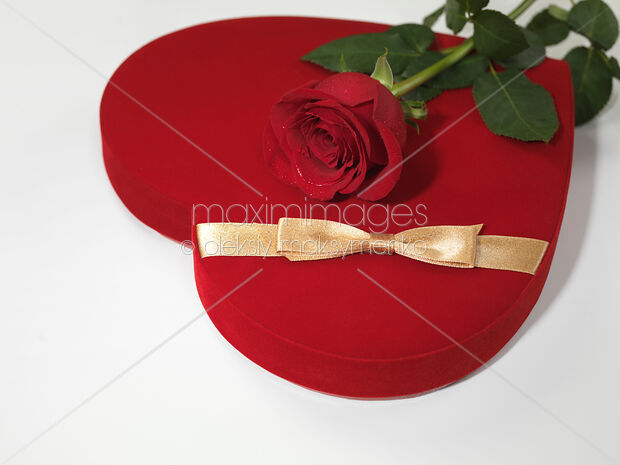 Photo of Red Heart-Shaped Gift Box and a Rose & Photo of Red Heart-Shaped Gift Box and a Rose   Stock Image #MXI21842