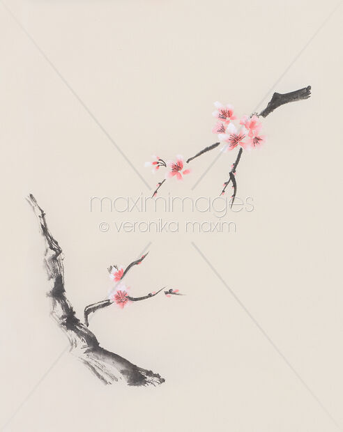 Sakura tree branches with cherry blossom flowers oriental Zen Sumie painting on beige rice paper