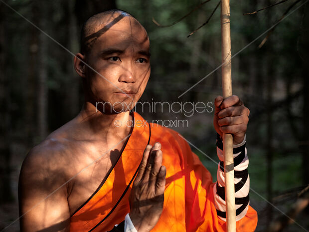 Shaolin warrior monk in a forest