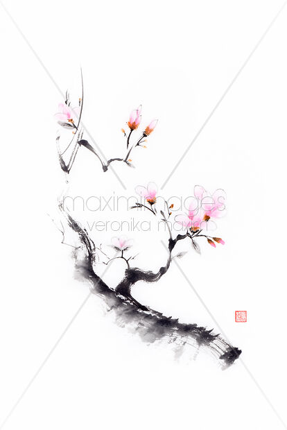 Sumi-e painting of a budding cherry blossom branch with budding flowers