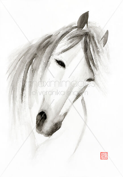 stock illustration wild horse artistic portrait sumi e painting