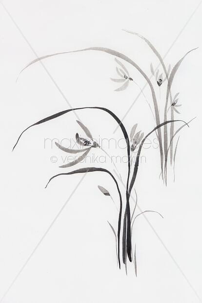 Stock photo of Wild orchids Sumi-e Japanese Zen painting artwork of flowers