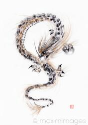 Asian Dragon with the Night Shining Pearl sumi-e black ink painting on white