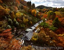 People at Otowa sacred waterfall at Kiyomizu-dera temple in beautiful fall scenery